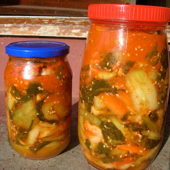 Homemade kimchi | Riotflower's Realm