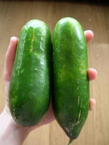cucumber size
