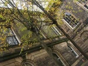 lancaster leaves