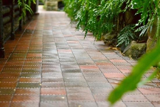 Tile floor in Glasgow Botanic Gardens.jpg