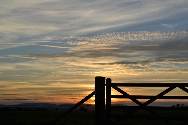 Farm fence and sunset in Cornwall, England.jpg