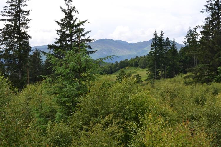 Perthshire hills