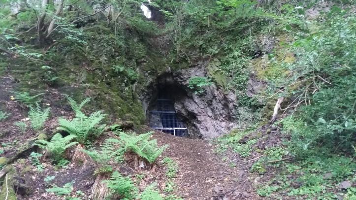 Old Copper mine in forest: Mine Wood, Bridge of Allan, Scotland