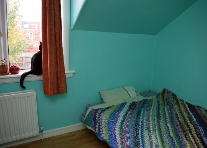 Spare room walls painted sea foam green