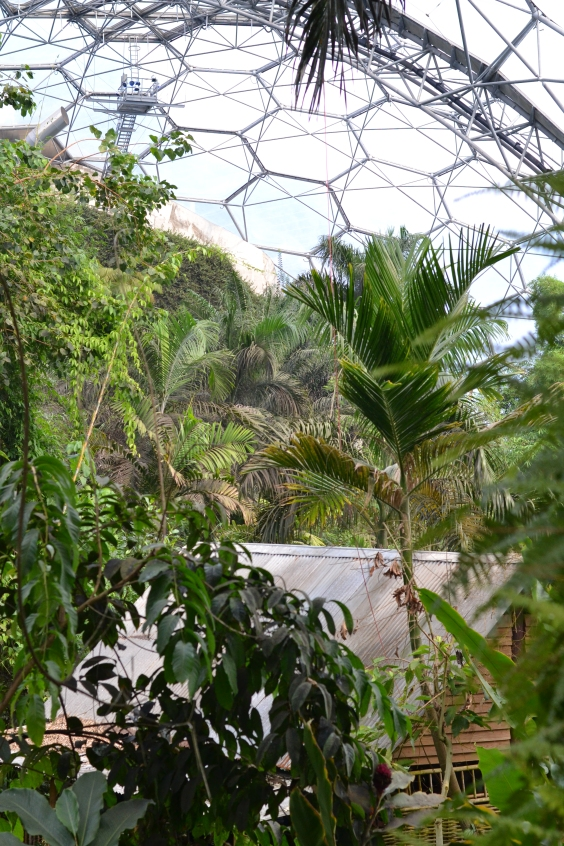 The Eden Project | Riotflower's Realm